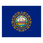New Hampshire State Flag Design Poster