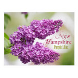 New Hampshire State Flower: Purple Lilac Postcards