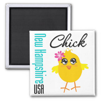 New Hampshire USA Chick Magnet