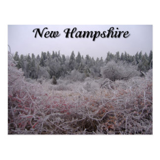 New Hampshire Winter Ice Post Card