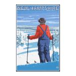 New HampshireSkier Admiring View Canvas Print
