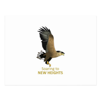 NEW HEIGHTS POST CARD