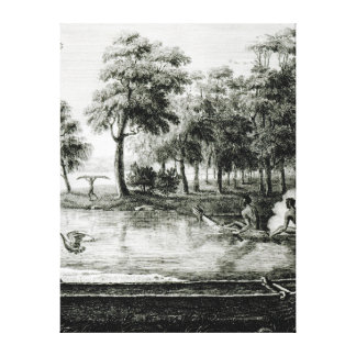 New Holland: New South Wales Canvas Print