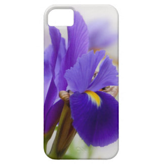 NEW iphone5  Purple Iris cover iPhone 5 Cover
