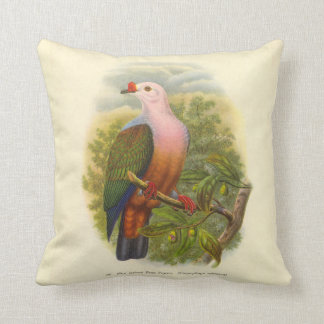 New Ireland Fruit Pigeon Cushion