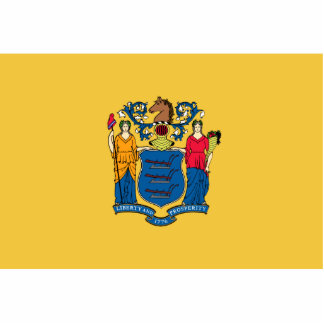 New Jersey Flag Magnet Cut Out