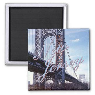 New Jersey USA State Souvenir Fridge Magnet