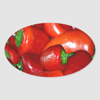 New Mexico Chili Peppers (Chile) Oval Sticker
