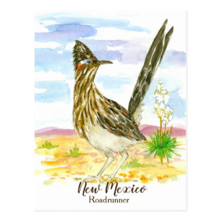 New Mexico State Bird Roadrunner Yucca Postcard