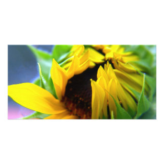 New Mexico Sunflower Personalized Photo Card