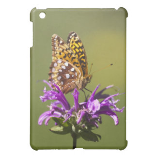new mexico, united states of america iPad mini cover