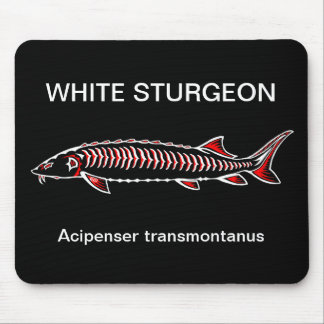New Native - White Sturgeon Mouse Pad