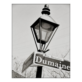 New Orleans, Decatur at Dumaine Poster