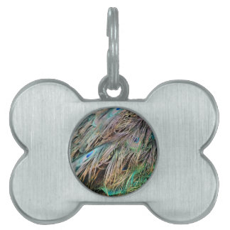 New Peacock Feathers Nice Spread Pet ID Tag