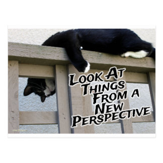 New Perspective Post Card