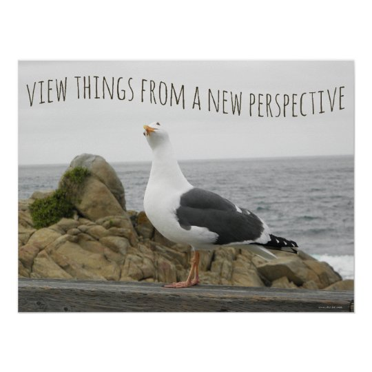 New Perspective Seagull Poster