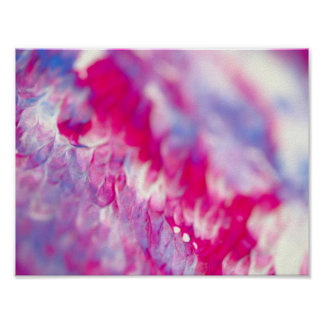 New photo poster in Shop : purple soft tones