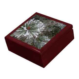 New Pine Cones Large Square Gift Box