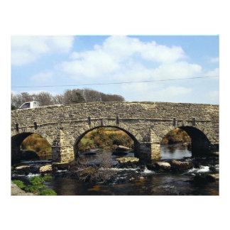 New Post Bridge Devon England Europe Flyer