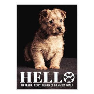 New Puppy Kitten Adoption Announcement Photo Card