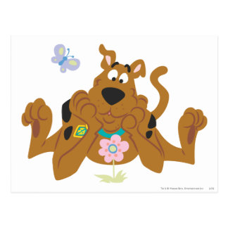 New Scooby Doo Review Pose 40 Postcard