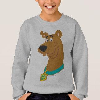 New Scooby Doo Review Pose 8 Sweatshirt