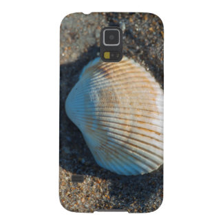 New Smyrna Beach, cockle shell Cases For Galaxy S5