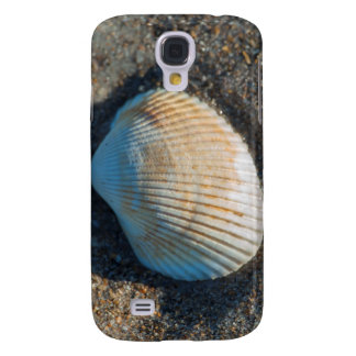 New Smyrna Beach, cockle shell Galaxy S4 Case
