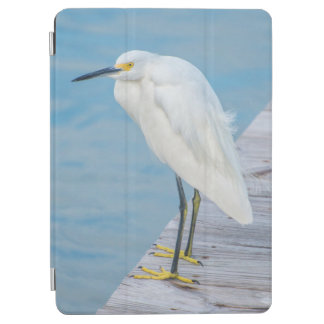 New Smyrna Beach, Snowy Egret on dock iPad Air Cover