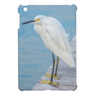 New Smyrna Beach, Snowy Egret on dock iPad Mini Case