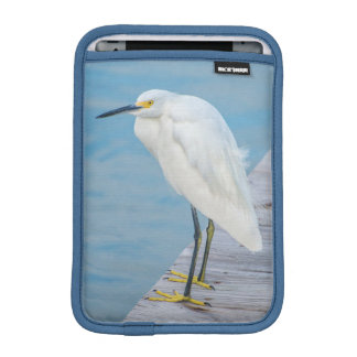 New Smyrna Beach, Snowy Egret on dock iPad Mini Sleeve