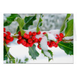 New Snow on the Holly Greeting Card
