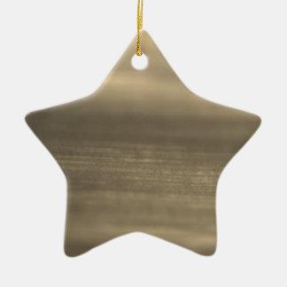 New star shape Element : brown Ceramic Star Decoration