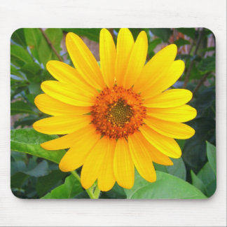 New Sunflower Mouse Mat