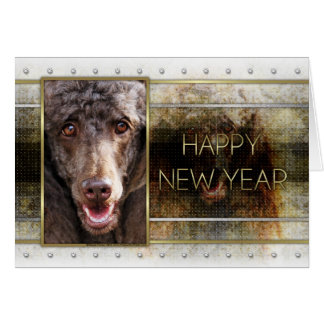 New Year - Golden Elegance - Poodle - Chocolate Card