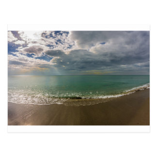 New Year's Day from Venice Florida Postcard