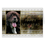 New Years - Golden Elegance - Cocker Spaniel Greeting Card