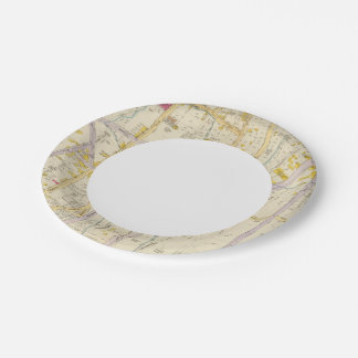 New York 10 7 Inch Paper Plate