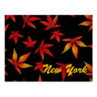 New York Autumn Leaves Postcard