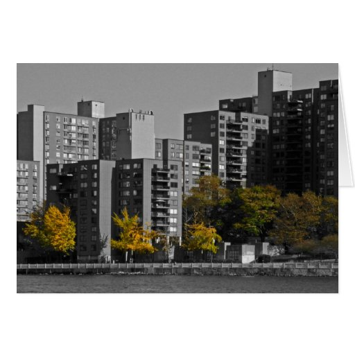 New York Autumn Note Card