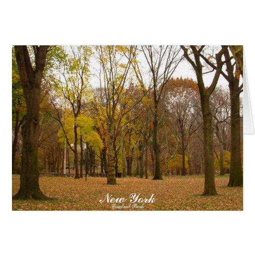 New York Card Central Park Custom Souvenir Card
