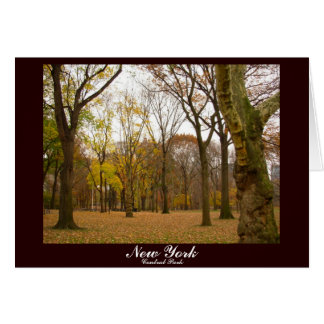 New York Card Central Park New York Souvenir Card