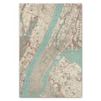 New York City 2 Tissue Paper