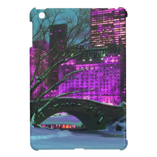 New-York City & Central Park Winter Landscape Cover For The iPad Mini