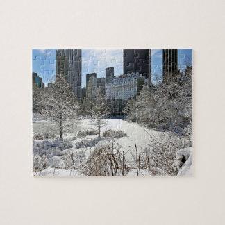 New York City Manhattan Central Park Jigsaw Puzzle