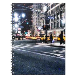 New York City Notebooks
