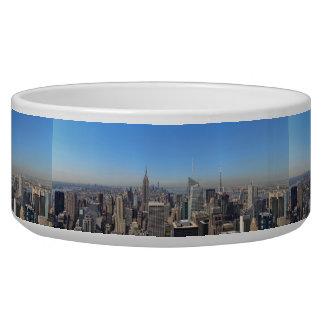New York City Skyscrapers State Destiny Destiny'S
