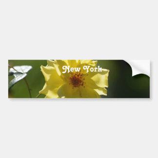 New York Roses Bumper Sticker
