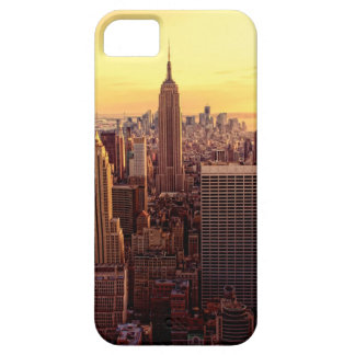 New York skyline city with Empire State iPhone 5 Case