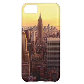 New York skyline city with Empire State iPhone 5C Case